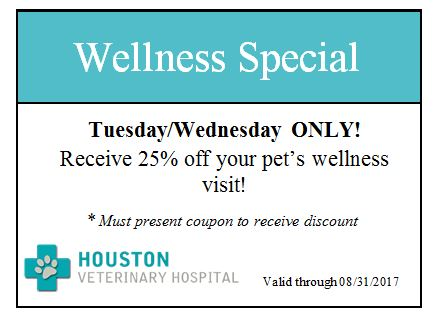 2017 Wellness Visit Special